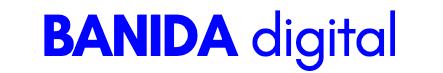 banida digital marketing agency logo