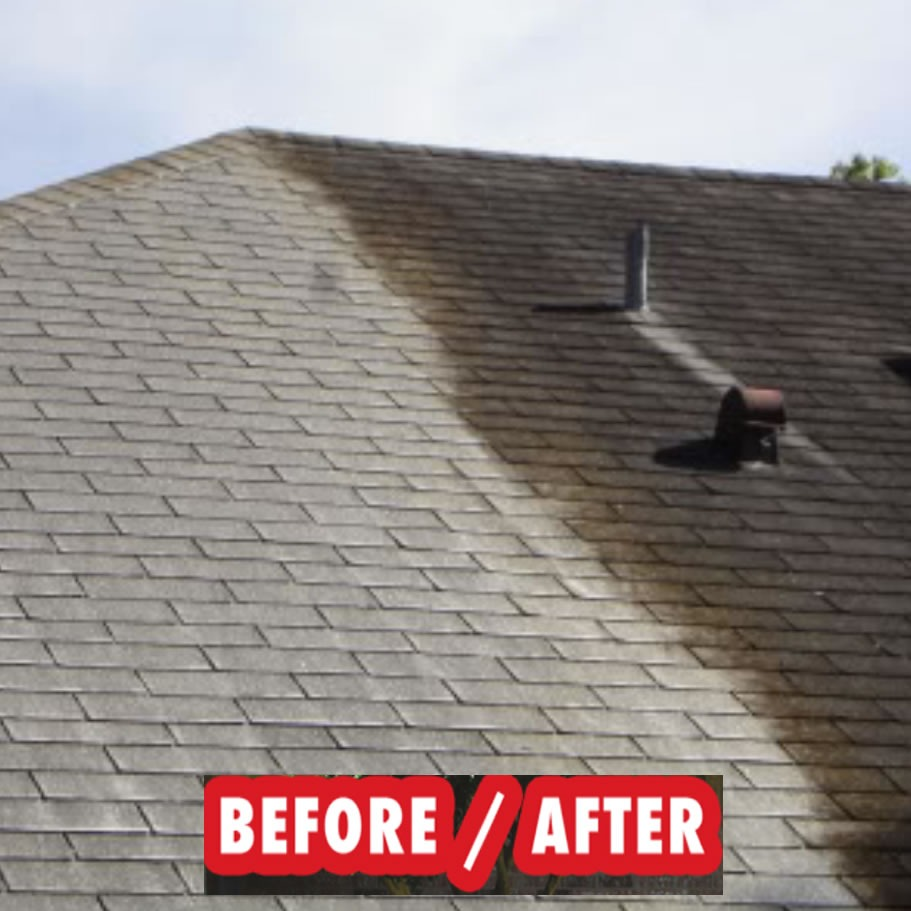 Roof Cleaning Cost Holland MI