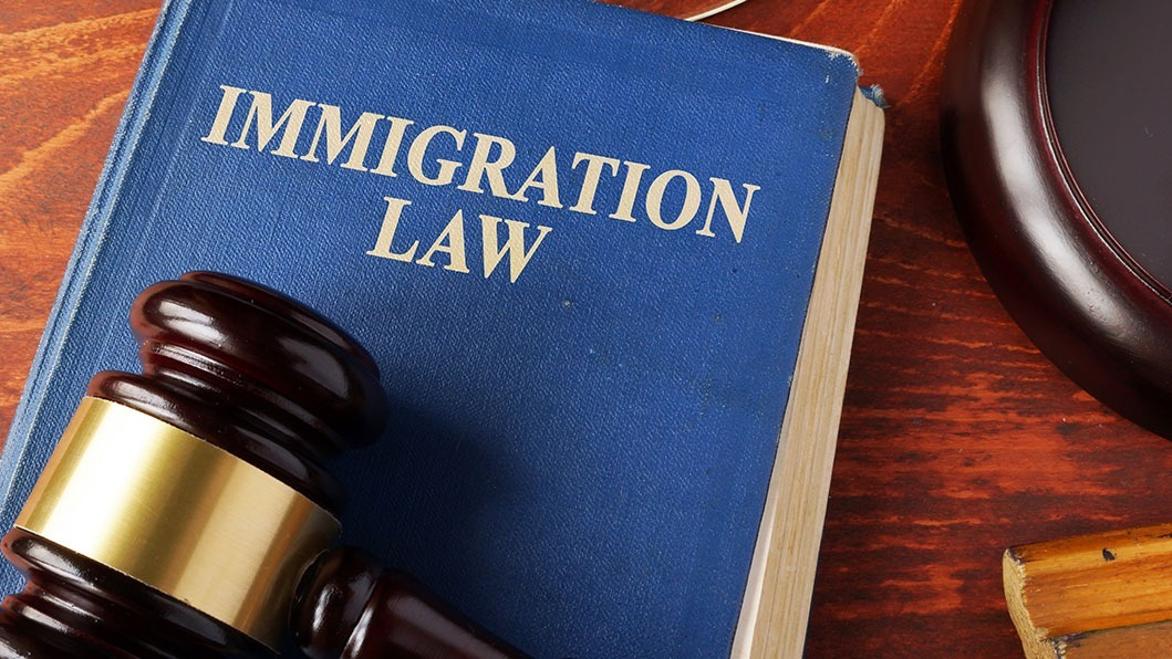 Immigration law-book and gavel